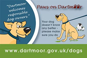 dartmoor_dogs